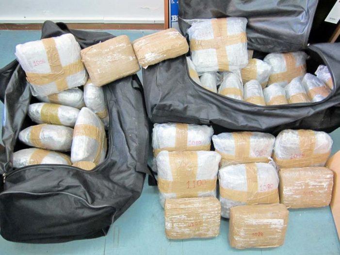 Kapen 230 kg marijuanë në kufirin greko-shqiptar, në pranga 4 grekë