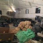 Arrestohet pronari i magazinës me 12 ton kanabis në Përmet (Emri)