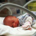 Gjirokastra po plaket, është qarku me numrin më të ulët të lindjeve