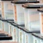 Zgjedhjet lokale, KQZ kërkon të punësojë 337 persona