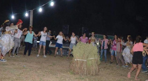 Jo vetëm kanabis, njihuni me fshatin shqiptar që prodhon deri 100 ton rigon në vit