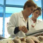 Siguria ushqimore, AKU nis kontrollet në bizneset e Gjirokastrës