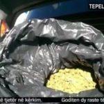 Gjirokastër, kapen 55 kg kanabis në dy operacione të ndryshme
