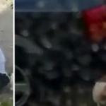 Ndodh edhe kjo në Tiranë, burri bën seks me qenin pas makinës (VIDEO +18)
