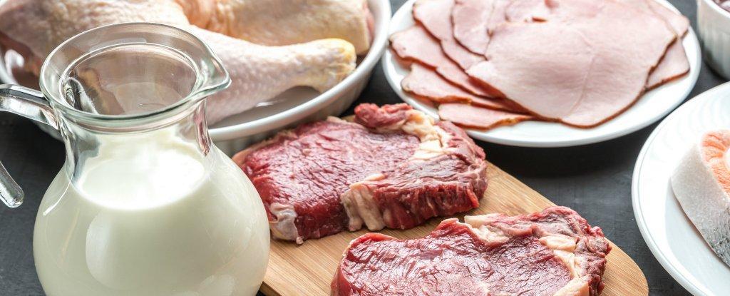 В Тверской области увеличилось производство молока и свинины