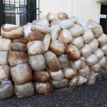 Shkatërrohet banda e drogës në Greqi, drejtohej nga një shqiptar