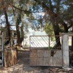 Përjetimet e gazetares në kampin e Tepelenës, përtej portës së dhimbjeve