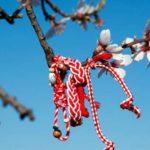 Verorja, simboli i bukur i Ditës së Verës. Ja domethënia e saj