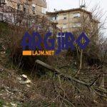 Pse rrezikohen pallatet në Gjirokastër? Shihni si i pret pemët bashkia në lagjen 'Punëtore' (FOTO)