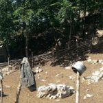 Gjirokastër, zhduket pa lënë gjurmë 42-vjeçari. Policia vihet në lëvizje
