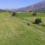 'Shell' zbulon naftë në Shpirag, nesër në Zagori ka protestë