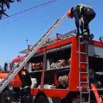 Zjarrfikësit në Gjirokastër kanë një kërkesë: Na duhet makinë e vogël për zjarret në zonën muzeale