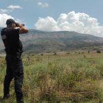 Kapet 125 kg kanabis në kufi me Greqinë, 7 persona në pranga