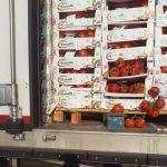 AKU bllokon në kufi 13.3 ton produkte të skaduara