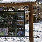Gjuetia e paligjshme në Gjirokastër, monitorime në zonën e 'Bredhit të Sotirës'