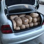 128 kg kanabis në kufi, ja kush është shqiptari i arrestuar nga policia greke