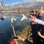 Gjirokastër, njihuni me 8 'banorët' e rinj të Liqenit të Viroit (FOTO)