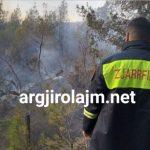 Tepelenë, zjarr masiv në Krahës, digjen 5 hektarë me pisha (VIDEO)