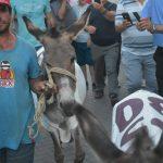 Militanti i PD-së del në protestë bashkë me dy gomerë (VIDEO)