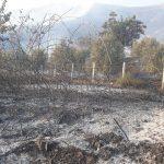 Finiq, shuhet zjarri brenda fshatit Kardhikaq