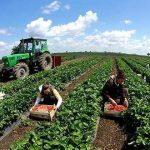 """Kush është """"vajza"""" nga fshati që tashmë punon si ministre Bujqësie në Itali"""